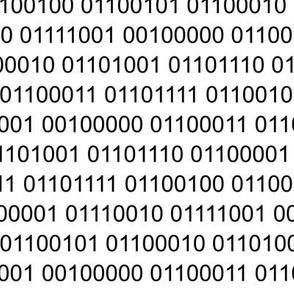 Binary Code in Black and White