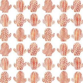 Orange cacti small