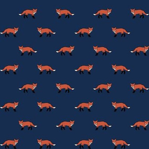 small foxen on navy