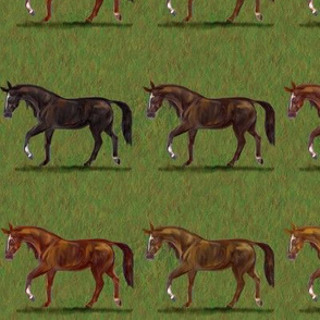 Chestnut Horses Stripe 2 wide