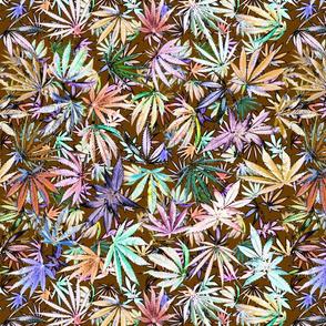 Sativa Indica Pastel Fall