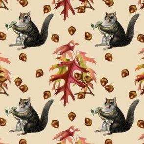 Fall Flying Squirrel on Flax
