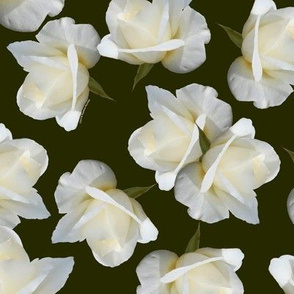 White Rosebuds on Dark Olive Green