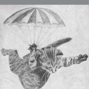 Skydiving kitten with grey border- simplified
