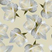 Rrosebuds-on-cream_shop_thumb