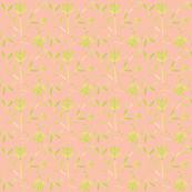 lavender comp apricot