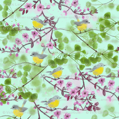 Yellow Robins in spring