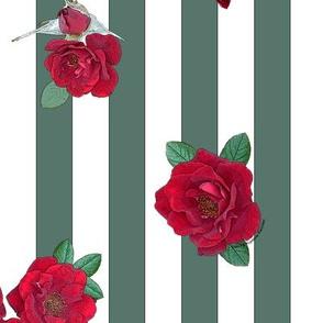 Crimson red rosebuds roses on dark sage green white stripes