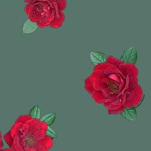 Crimson red rosebuds roses on sage green