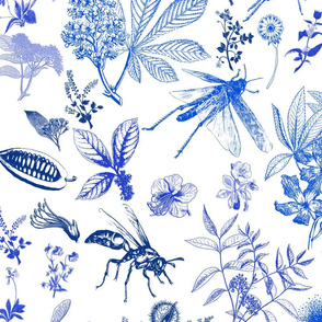Chinoiserie insects