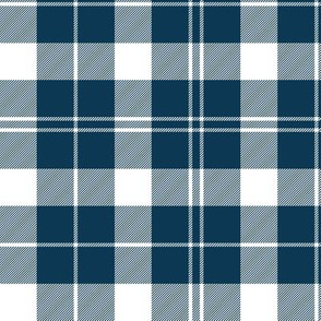 Barbie's Moss plaid - blue and white, 6""