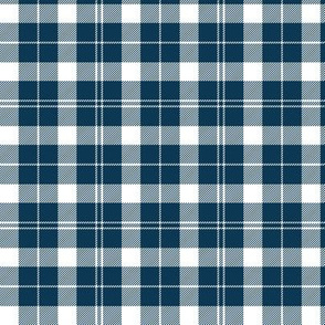 Barbie's Moss plaid - blue and white, 3""