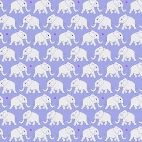 elephants walking - grey-lilac