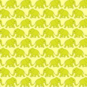 elephants walking - yellow-green