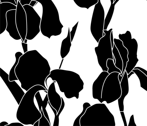 Large Scale Iris Flower -Black Flowers fabric by natalee_wegmann on Spoonflower - custom fabric
