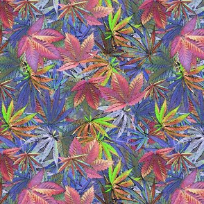 Cannabis Camo Candy