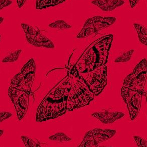 Moth Cloth (Red and Black)