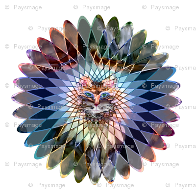 mandala indian spirograph wild feline colors