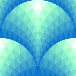 08120855 : faceted scales : arctic