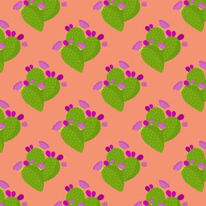 Cactus on Terra-Cotta