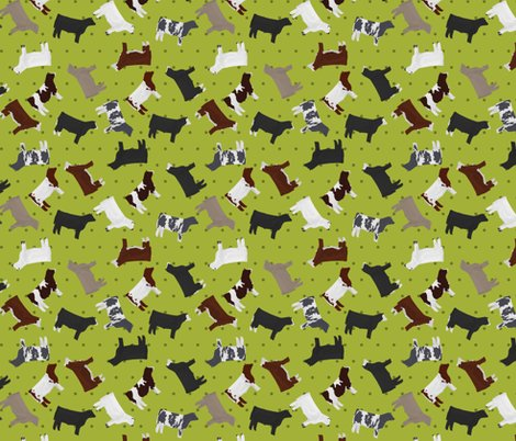 Rsteers-mixed-breed-lime-polkadot_shop_preview