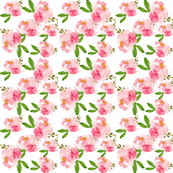 Pink watercolor peony