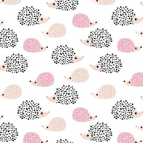 Scandinavian sweet hedgehog illustration for kids gender neutral black and white pink fall