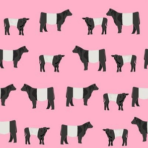 belted galloway fabric, belted galloway cow, cow fabric, cattle fabric, farm fabric, farm animals fabric, farm fabric by the yard, farm animals - pink