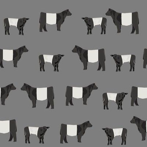belted galloway fabric, belted galloway cow, cow fabric, cattle fabric, farm fabric, farm animals fabric, farm fabric by the yard, farm animals - charcoal