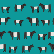 belted galloway fabric, belted galloway cow, cow fabric, cattle fabric, farm fabric, farm animals fabric, farm fabric by the yard, farm animals - blue