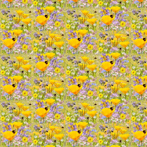 Busy Bees & California Poppies-ed