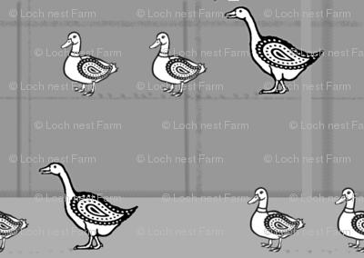Duck, Duck, Goose | Large-Scale Folk Art Poultry Print