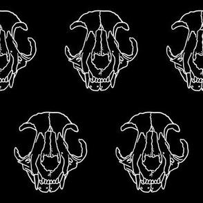 Cat Skull - On Black