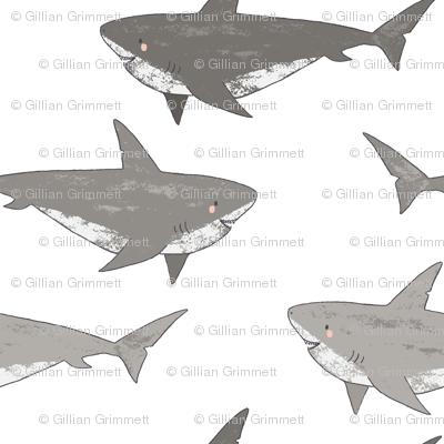 Shark Attack, cute sharks, novelty sharks