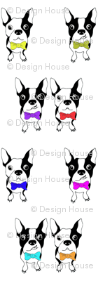 BOWTIE BOSTONS   (Large Scale)