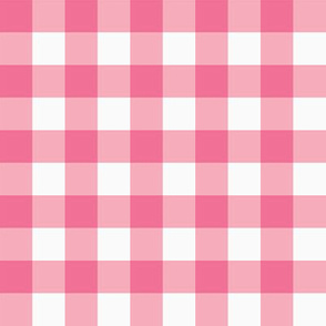 small gingham pink