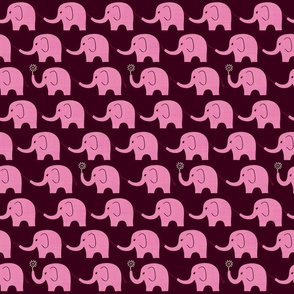Elephant Parade on Raspberry