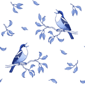Blue singing birds
