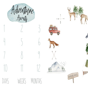 """42"""" x 36"""" // The Mountains are Calling Baby Milestone Blanket"""