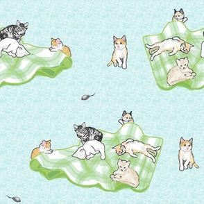 kittens on a green blanket blue backgroundA black
