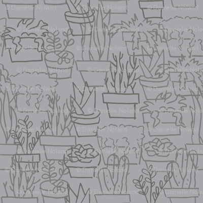 Sketchy Succulents in Grey