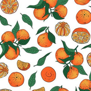 Tangerins on a white background