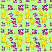 Flower Patch Chicks
