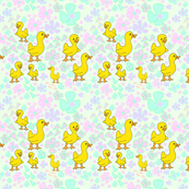 Baby Chicks in Pastels