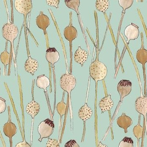 Seed pod stems, green background