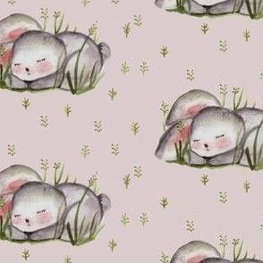 hopp little bunny