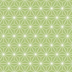 Radiant Triangles Bamboo Coordinate light green and white
