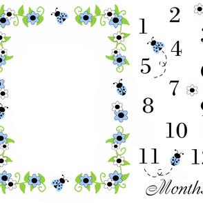 Blue Ladybug Baby Girl Milestone Monthly Photo Prop