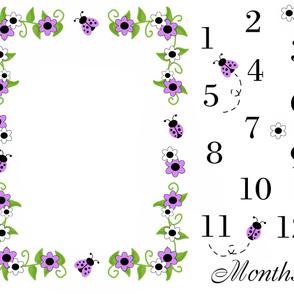 Purple Lavender Ladybug Baby Girl Milestone Monthly Photo Prop