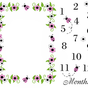 Pink Ladybug Baby Girl Milestone Monthly Photo Prop